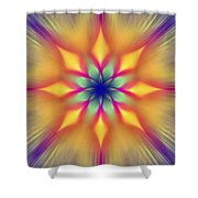 Ornament 5 Shower Curtain
