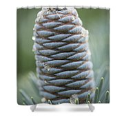 Ornament Of Nature Shower Curtain
