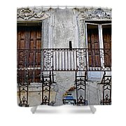Ornate Weathered Artistic Architecture Shower Curtain