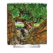 Osage Orange Shower Curtain