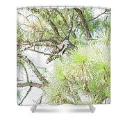 Osprey Applesauce Shower Curtain