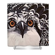 Osprey Eyes  Shower Curtain