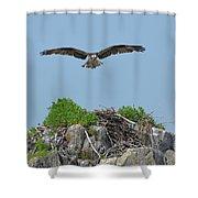 Osprey Flying Over A Bird's Nest Shower Curtain