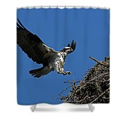 Osprey Landing Approach - Oregon Coast Shower Curtain