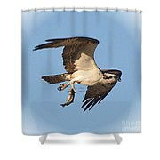 Osprey Natures Way Ll Shower Curtain