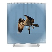 Osprey Natures Way Lll Shower Curtain