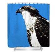 Osprey Profile Shower Curtain