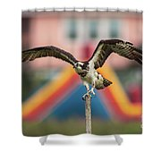 Osprey Salutes The Busch Eagle Shower Curtain