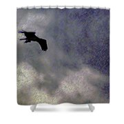 Osprey Silhouette Shower Curtain