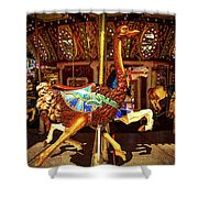 Ostrich Carousel Ride Shower Curtain