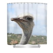 Ostrich Head II Shower Curtain