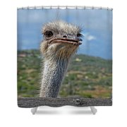 Ostrich Head Shower Curtain