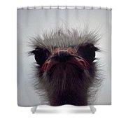 Ostrich - The Sharp End Shower Curtain