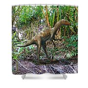 Othiniela In The Forest Shower Curtain