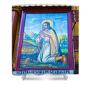 Our Lady Of Guadalupe 3 Shower Curtain