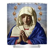 Our Lady Of Health Shower Curtain