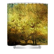 Our Town In Autumn Shower Curtain