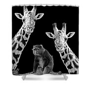Our Wise Little Friend - Monkey And Giraffes In Black And White Shower Curtain