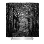 Out From The Darkness Shower Curtain