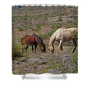 Out In The Open Range Shower Curtain