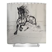 Out Of Darkness Comes Strength Shower Curtain
