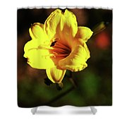 Out Of Darkness Into Light Shower Curtain