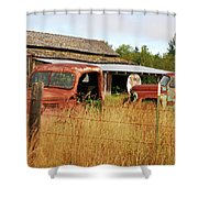 Out Of Gas. Rusty Trucks And Texaco Sign Shower Curtain
