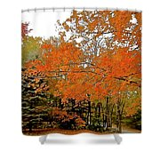 Out Of Season Shower Curtain