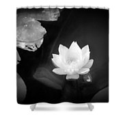 Out Of The Depths Bw Shower Curtain