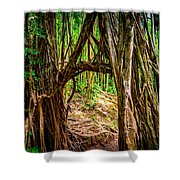 Out Of The Hole And Through The Trees Shower Curtain