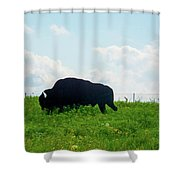 Out On The Range Shower Curtain