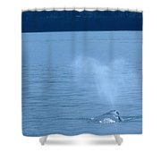 Out The Blow Hole  Shower Curtain