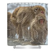 Out We Come Shower Curtain