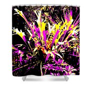 Outburst Shower Curtain by Eikoni Images