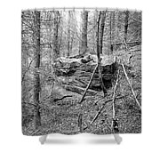 Outcrop, Woods, Dipton Burn Shower Curtain