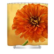 Outrageous Orange Shower Curtain