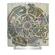 Outside The Mandala Shower Curtain