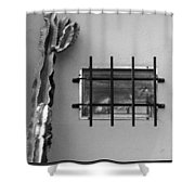Outsiders - Cactus By The Window Shower Curtain