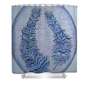 Oval With Two Tangled Feathers Shower Curtain