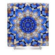 Ovarian Cancer Awareness Mandala Shower Curtain