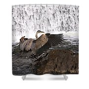 Over The Rocks We Go Shower Curtain
