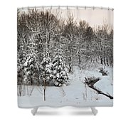 Over The Stream Shower Curtain