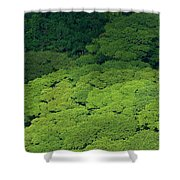 Over The Treetops Shower Curtain