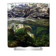 Over Under Honu Shower Curtain
