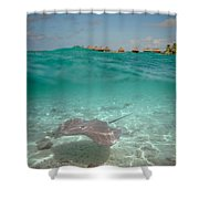 Over-under Water Of A Stingray At Bora Bora Shower Curtain