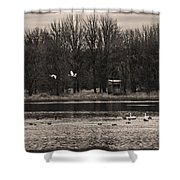 Overflight Shower Curtain