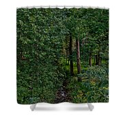 Overgrown Brook Shower Curtain