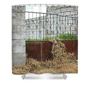 Overgrown Rusted Gate Shower Curtain