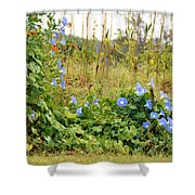 Overtaking Beauty Shower Curtain by Jan Amiss Photography