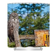 Owl 1 Shower Curtain